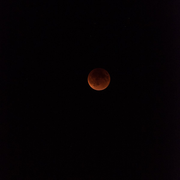 blood  red supermoon eclipse